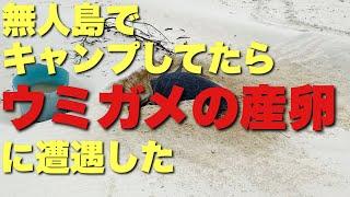 無人島キャンプ3!焚火料理と巨大生物…
