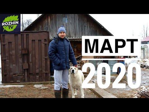 ОБЗОР ХОЗЯЙСТВА МАРТ 2020