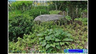 2018/06/27 서초우면지구 선안교차로 인근 정원 …