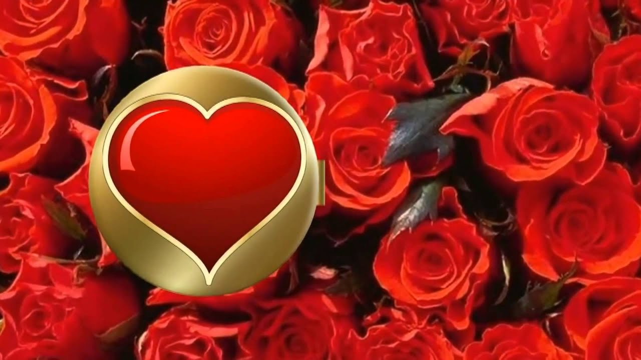 картинки цветы любимой
