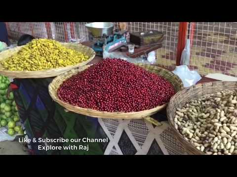 Dahanu, Bordi And Mahalaxmi Temple - Travelonk Adventures