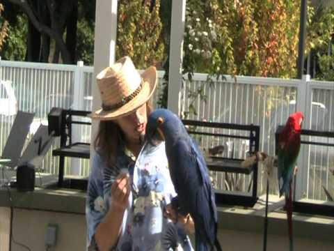 Happy Birds Show at Catrina's 10th B-day
