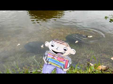 Julia Smith's Flat Stanley feeding fish 1A