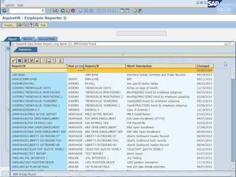 SAP HR Payroll Reports And Interfaces Without ABAP Programming Or Microsoft Excel