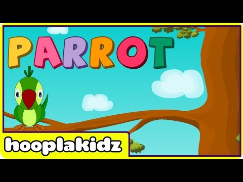 How To Spell - Parrot
