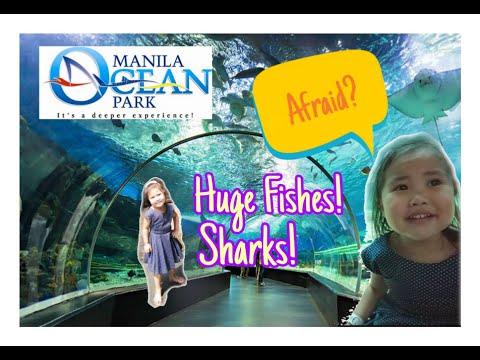 Manila Ocean Park 2019 Part I