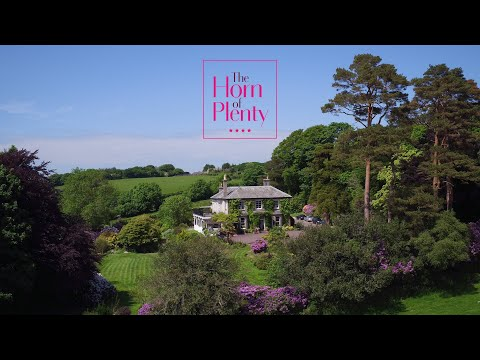 Horn of Plenty Wedding Virtual Tour Video