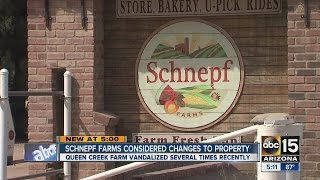 Recent acts of vandalism and theft reported at Schnepf Farms