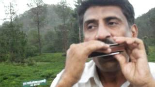 Dil Ki Girah .... - on harmonica