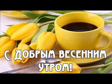 Доброе весеннее утро💖Пожелание Доброго утра и Хорошим Днем💖Самая Красивая Открытка с Добрым утром