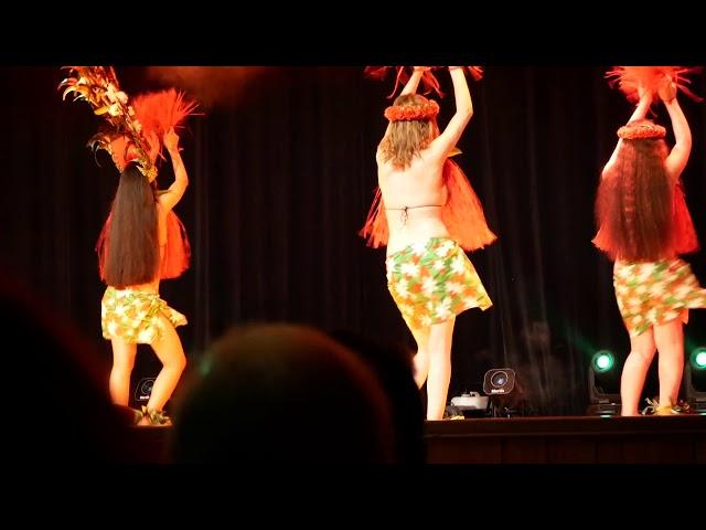 Spectacle Danse Tahitienne Ori Tahiti à Lyon