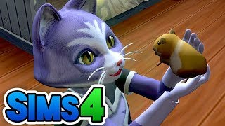 [LIVE] Sims4のハムスターを観てみよう【Vtuber Live040】