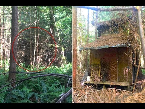 Real Life Mystery: Arcata Community Forest Cabins
