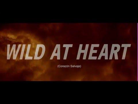Wild at heart /Corazón Salvaje