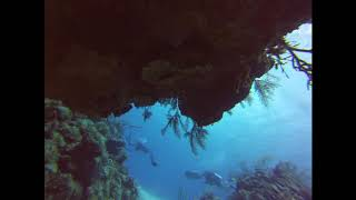 St. Thomas SCUBA Dive right before a storm, on GoPro Hero 3