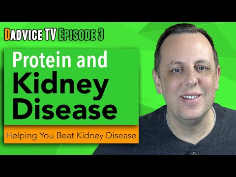 High-Protein Diets – Harmful to Health Kidney Function