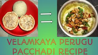 velamkaya perugu pacchadi.| tasty recipe.