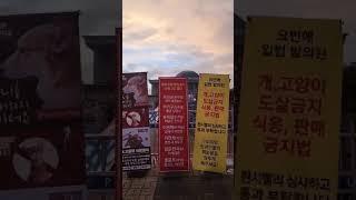 @7월19일 국회천막농성 최경숙선생님 이세요덥고 비오는…