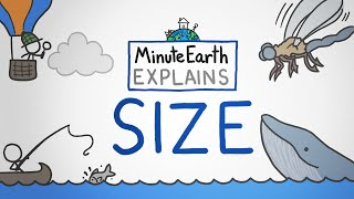 MinuteEarth Explains: Size