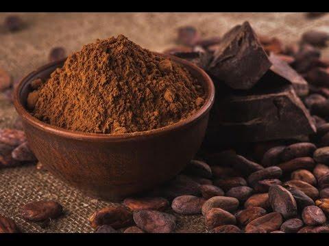Aprenda a Fazer Chocolate Com Indígenas da América Central | Conheça os Benefícios do Cacau