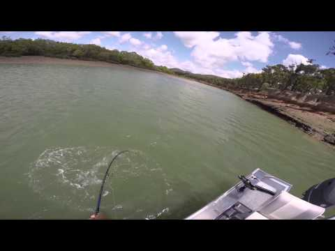 Barra Session Central QLD