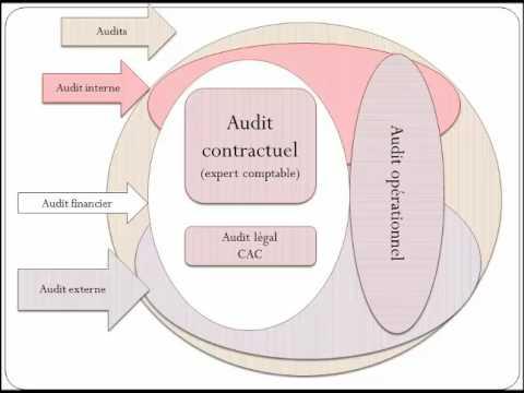 D finition de l 39 audit et de l 39 expertise comptable doovi - Cabinet d expertise comptable definition ...