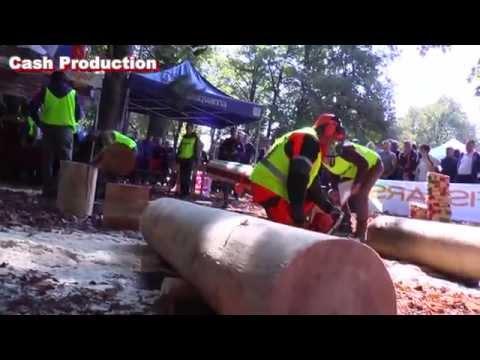 Vrnjačka Banja: JP Srbijašume - Šumarijada, takmičenje sekača u seči drveća