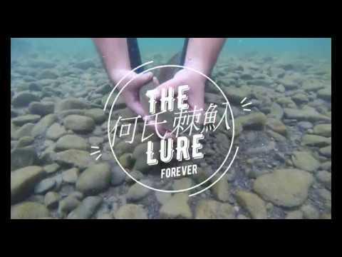 路亞Lure Fishing/卷仔/何氏棘魞/放魚囉 - YouTube
