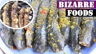 Grilled Catfish/Amazing  Catfish  Recipes Episode #1