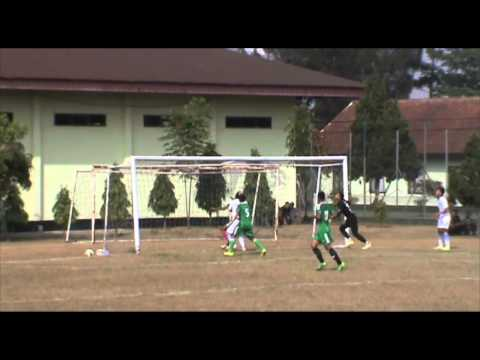 (VIDEO) Highlight Ujicoba Persib vs PSAD