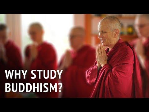 Why study Buddhism?