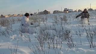 Охота на зайца зимой без единого выстрела