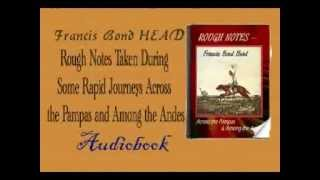Rough Notes Taken During Some Rapid Journeys Across the Pampas and Among the Andes Audiobook