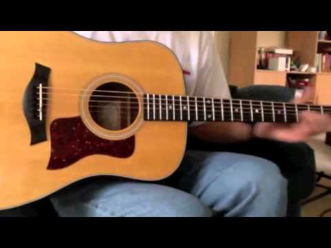 Taylor 310 - Review