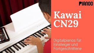 Digitalpiano für Einsteiger und Fortgeschrittene - Test: Kawai CN29