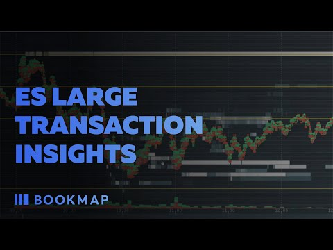 ES Large Transaction Insights