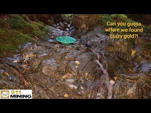 Huge Bedrock & Moss Gold At The Ultimate Placer Deposit!