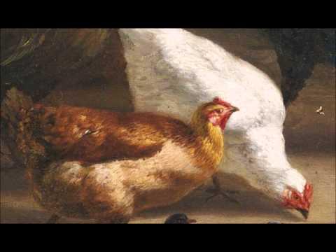 "Joseph Haydn / Symphony No. 83 in G minor ""La Poule"" (Kuijken)"