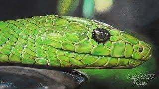 Como Dibujar una Serpiente Realista