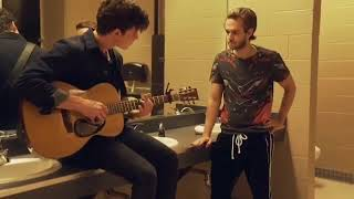 Shawn Mendes collaborating with Zedd ? Video