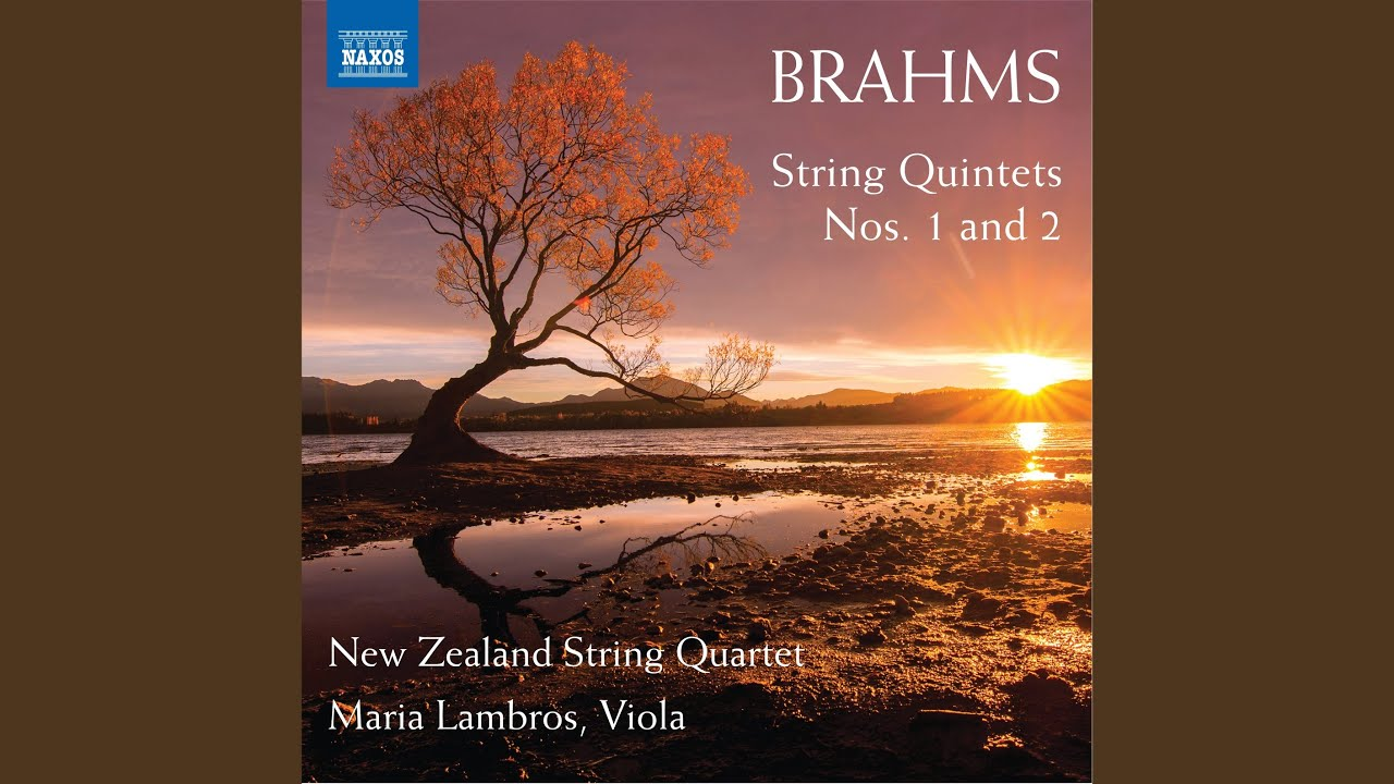 """String Quintet No. 1 in F Major, Op. 88 """"Spring"""": II. Grave ed appassionato - Allegretto vivace"""