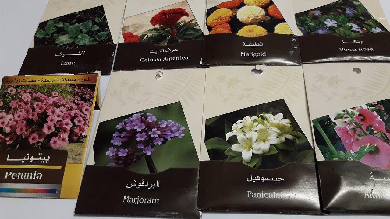 اماكن بيع البذور ومعدات الزراعة فى القاهرة نبات زينة نبات مثمر سماد Youtube