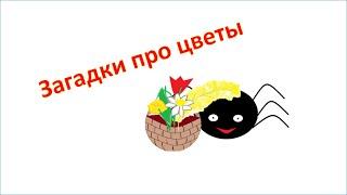 Познавательное видео для детей.  Загадки про цветы  Загадки для детей