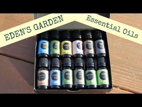 Why I Chose Eden's Garden Essential Oils & My 12 Oil Starter Kit