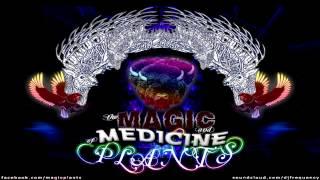 Magic Plants - Castle Keep