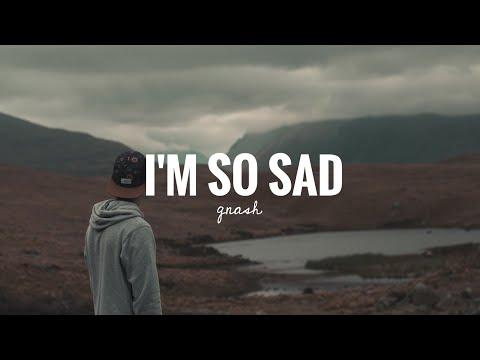 gnash---i'm-so-sad-(lirik-terjemahan)
