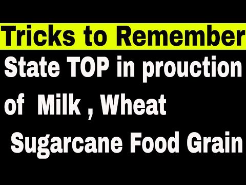 STATE TOP IN PRODUCTION OF RICE,WHEAT,SUGAR,MILK,FOOD GRAINS_TRICK TO REMEMBER