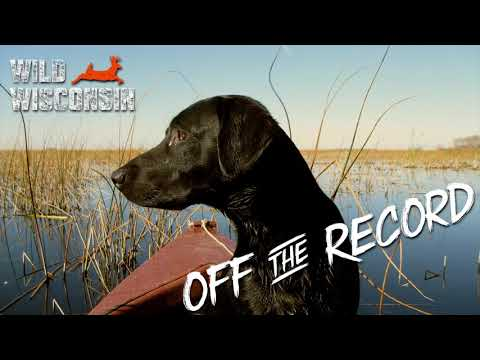 Gray Wolves In Wisconsin - Off The Record Podcast Ep. 7