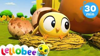 10 Little Speckled Eggs | Kids Learning Songs | Kids Videos | Baby Songs & Nursery Rhymes