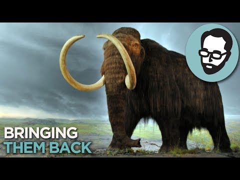 The Weird Plan To Fight Climate Change With Mammoths | Answers With Joe